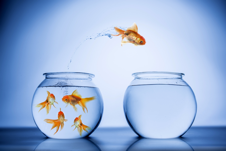 Lead-Beyond-Authority-Challenge-Status-Quo